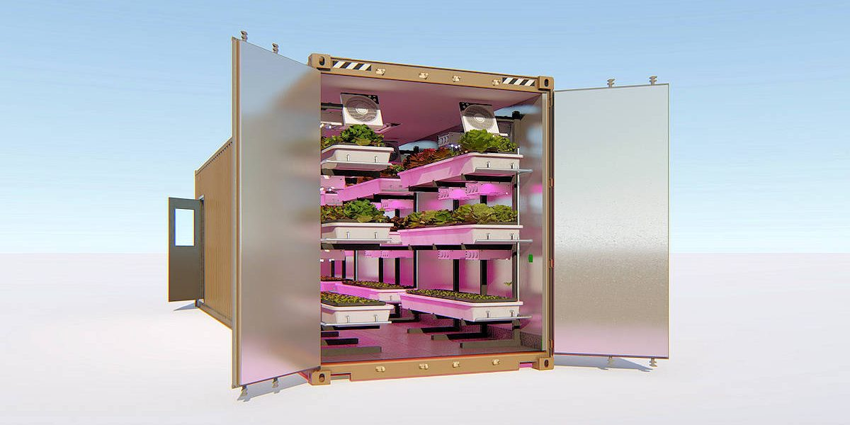 shipping container grow box